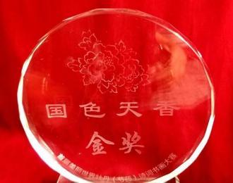 中国著名牡丹花王女画家詹玉燕:国色天香金奖 爱心满满
